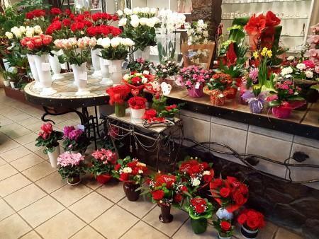 kwiaciarnia 1