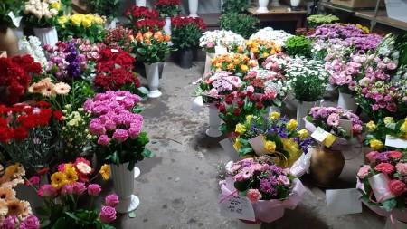 kwiaciarnia 4