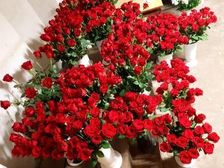 kwiaciarnia 5